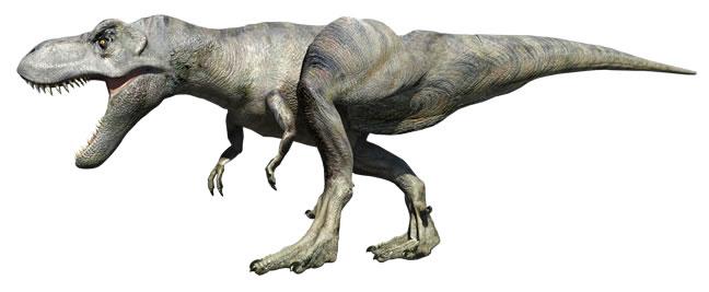 ティラノサウルスの画像 p1_30