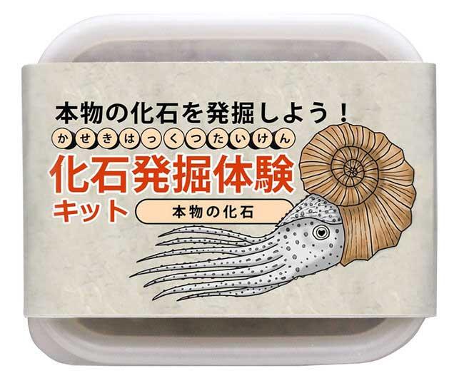 【本物】化石発掘イベント