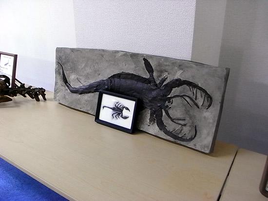巨大海サソリVS現代サソリの展示のレンタル