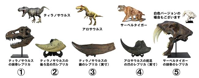 恐竜レプリカ5点セット