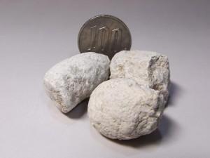 サーベルタイガーのウンチ化石