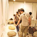 本物タッチ化石は大人気コンテンツ