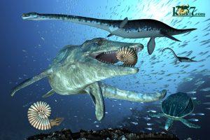 白亜紀の海、オリジナルイラスト