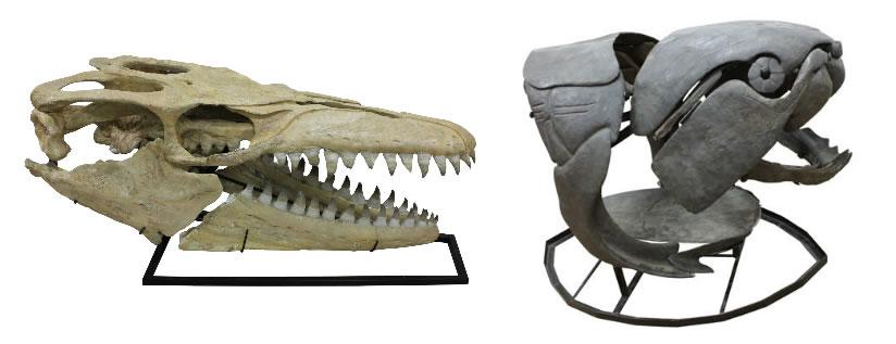 博物館級化石標本のレンタル