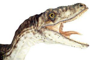 3m実寸大恐竜 デイノニクスオープンマウス