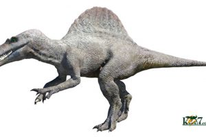 低画質版スピノサウルス